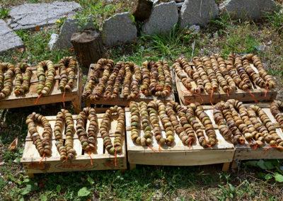 Suszone figi w drodze do klaszotu Ostrog